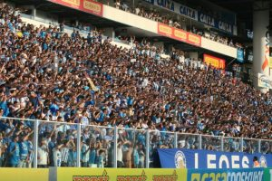 Torcida do Avaí no Estádio Ressacada.